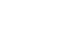 Aesir Solution Partner